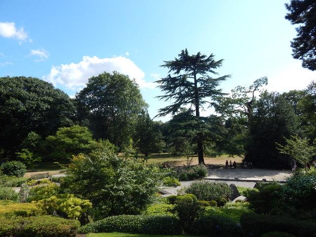 Japanese Gardens, Kew