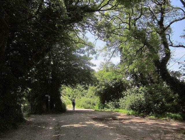 Marsh Lane, West Charleton