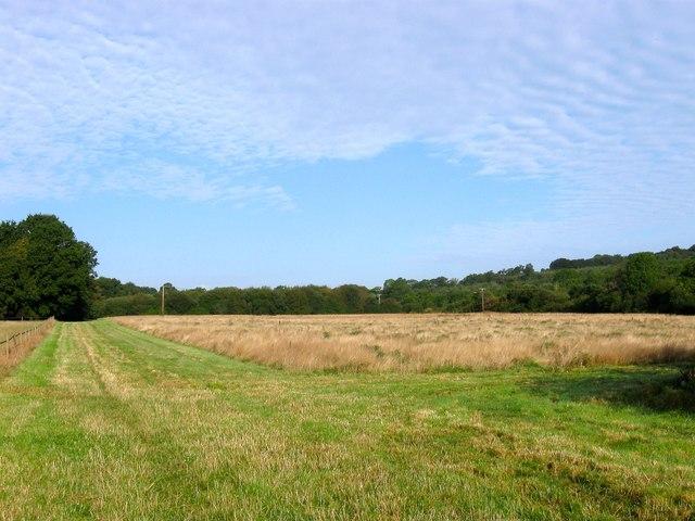 Johns Field (1)
