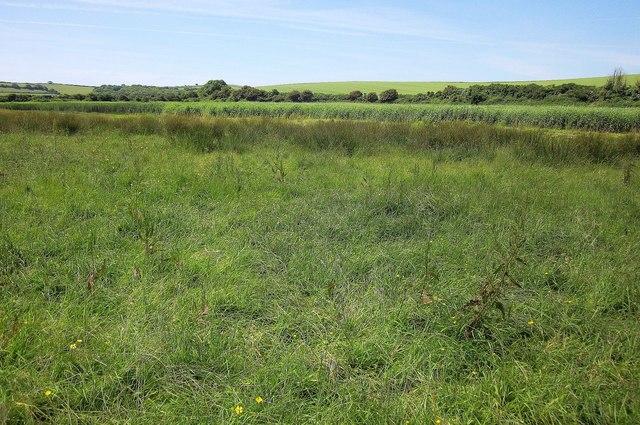 West Charleton Marsh