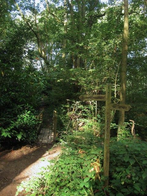 Footbridge, Naillard's Wood