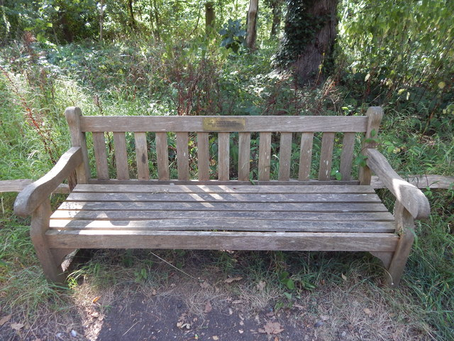 Bench in Kew Gardens