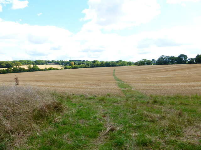 Footpath to The Avenue crosses stubble field