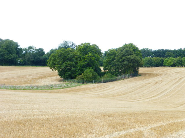 Pit (dis) in stubble field
