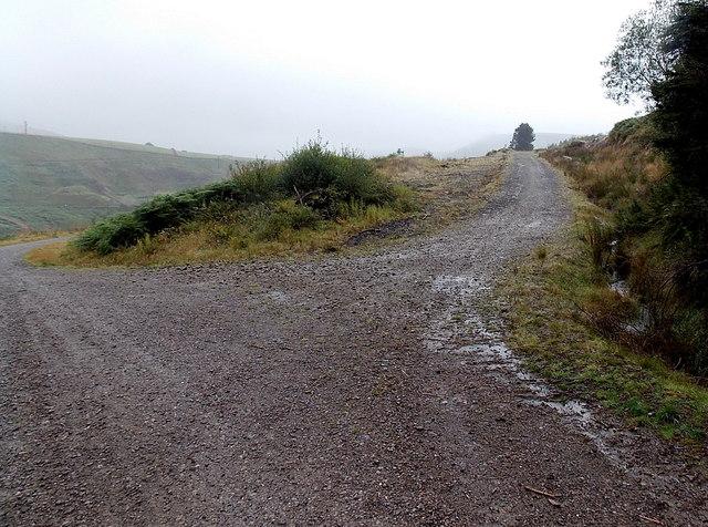 Track junction in woodland north of Blaengarw