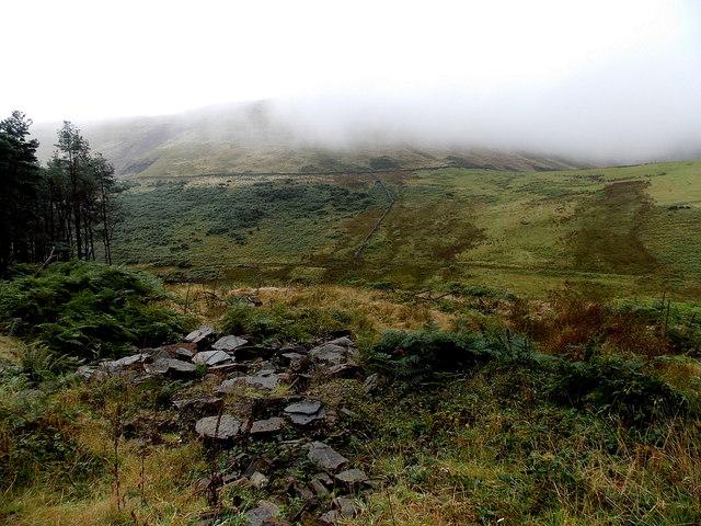 Misty hillside north of Blaengarw