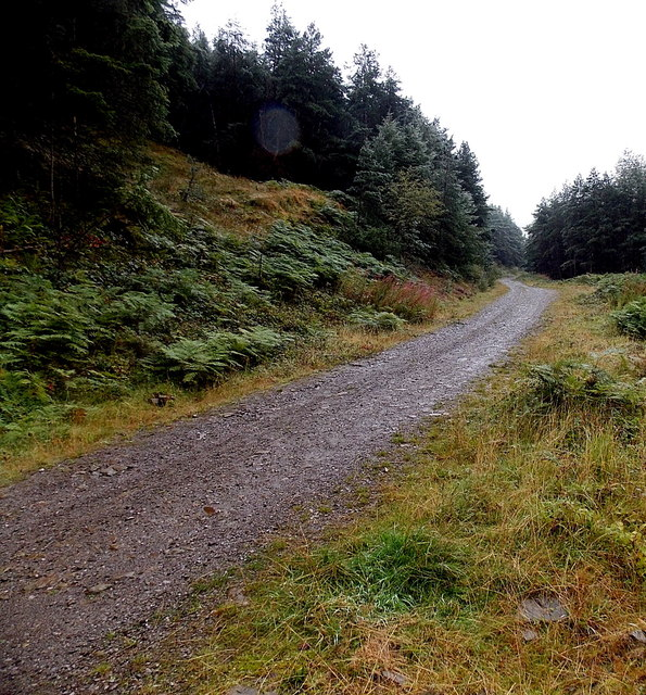 Track through the Garw Valley north of Blaengarw