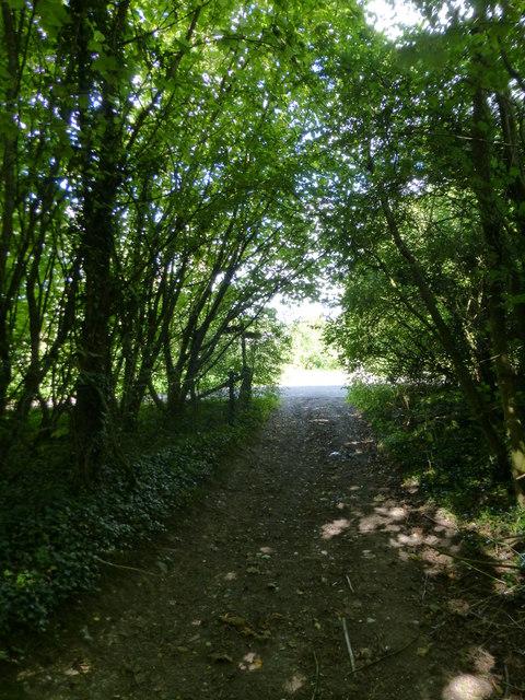 Looking north on Bayman's Lane