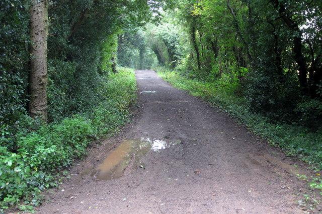 Track to Normanton-le-Heath