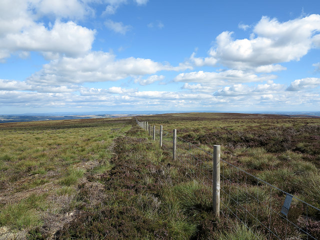 Fence line heading towards Greets Hill