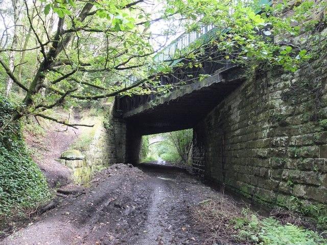 Bridge over path following old railway line