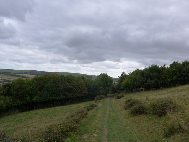 South Downs Way, Exton to Buriton (72)