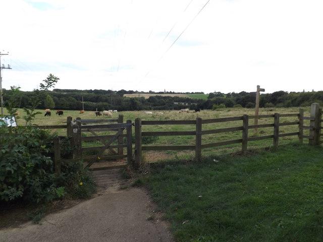 Footpath onto Belstead Meadows