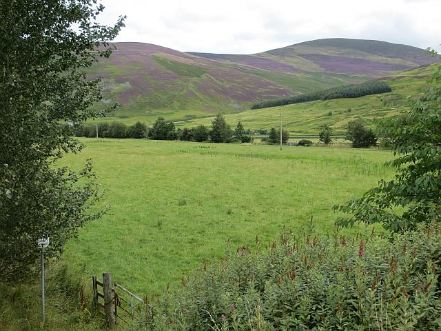 Field, Stanhope