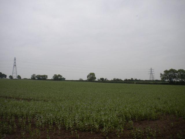 Field east of Halloughton