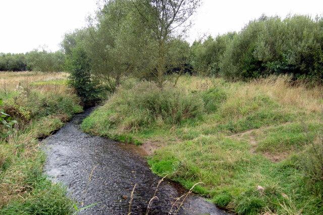 River Sence