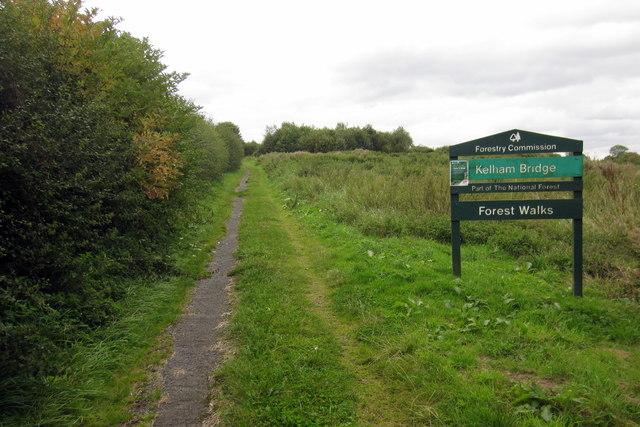 Kelham Bridge Forest Walk