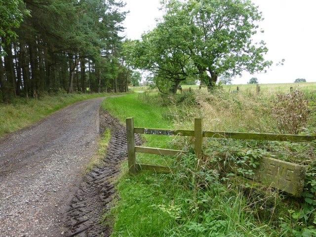 Track to Haredene