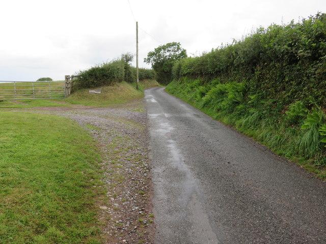 Road near Coed Adam