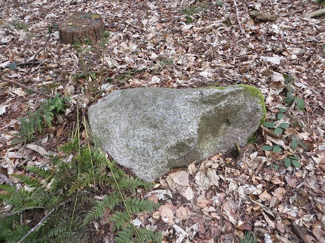 Granite erratic, Dudmaston