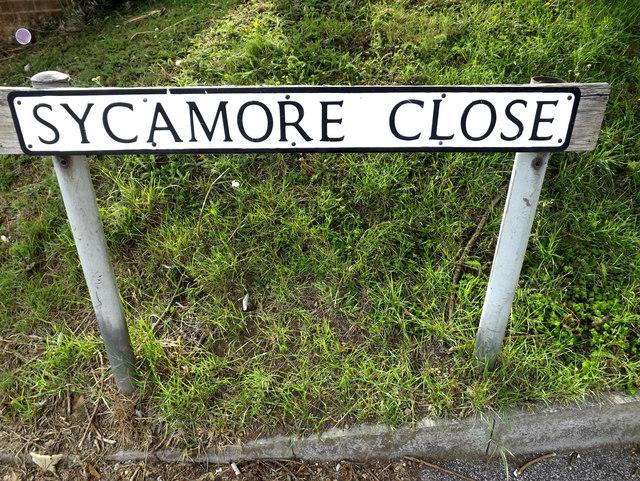 Sycamore Close sign