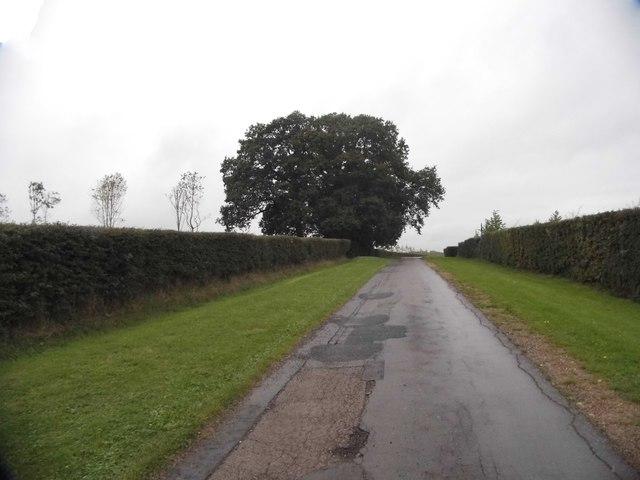 Bookham Road, Downside