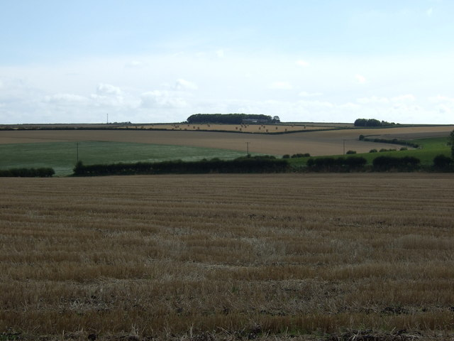 Stubble field south of Grindale