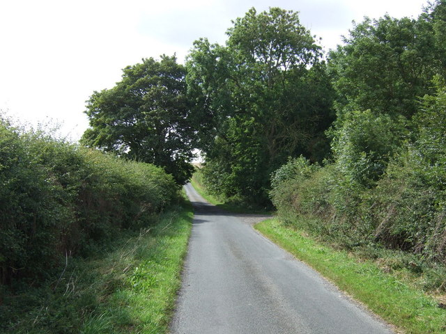 Rural road beside Fox Covert Plantation