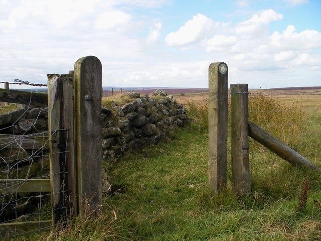 Footpath and old field boundary near Nab Farm