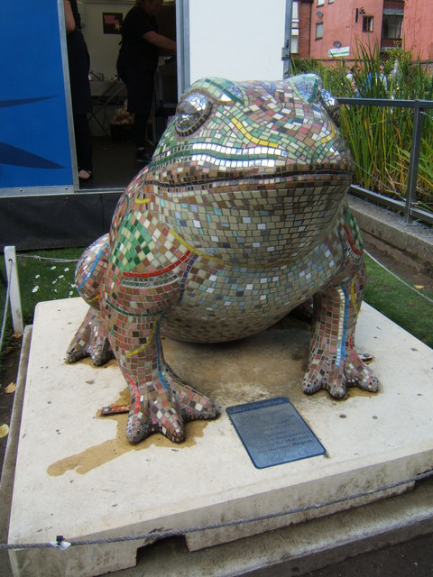 Reflective toad