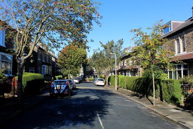 Avondale Grove, Shipley