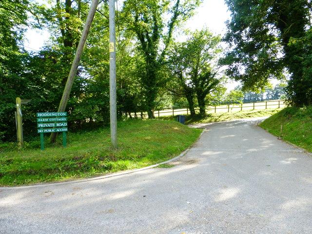 The road to Hoddington Farm Cottages