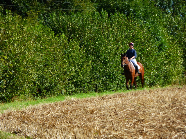 Horse and rider on footpath near Bidden Lane