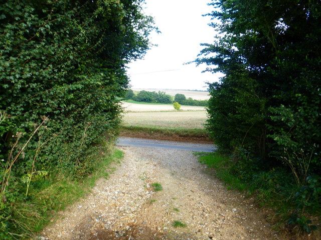 Looking across Little Dean Lane from field entrance