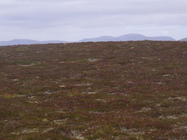 Ridge-top west of Allt Eindart, Glenfeshie