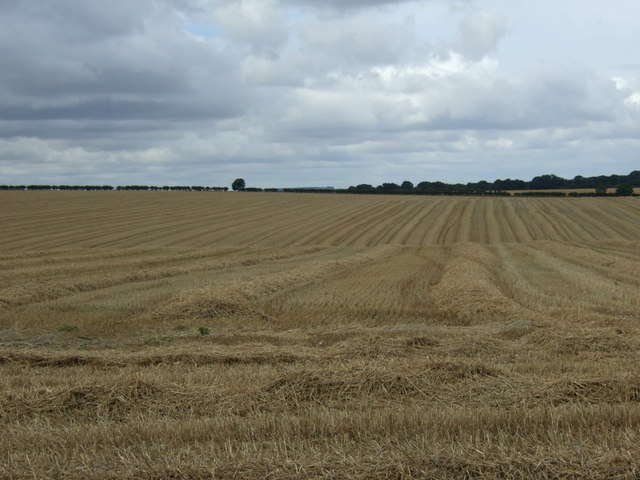 Stubble field near Charleston Farm