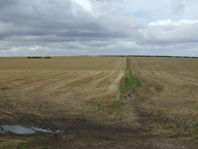 Stubble fields, Boynton Field