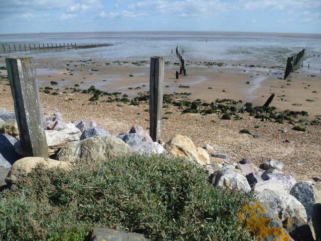 The beach near Shellbeach