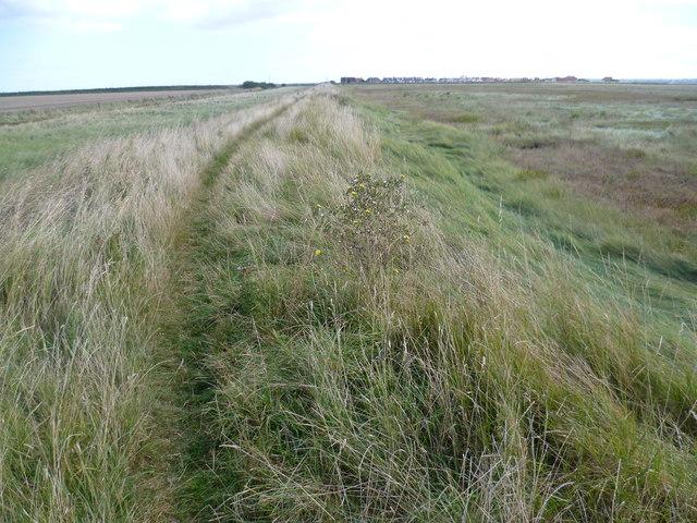 Path on the sea wall to Shellness