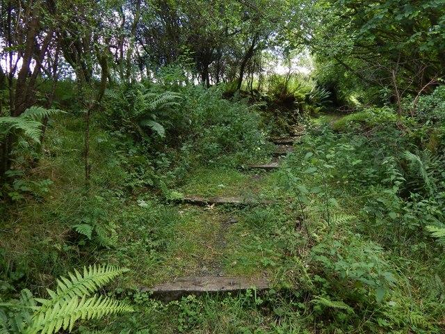 Path to the Greenock Cut