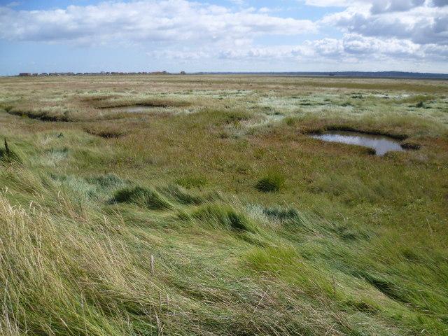 Looking across the salt marsh to Shellness