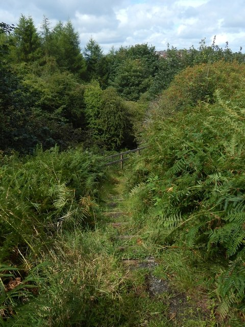 Path to Pennyfern Road