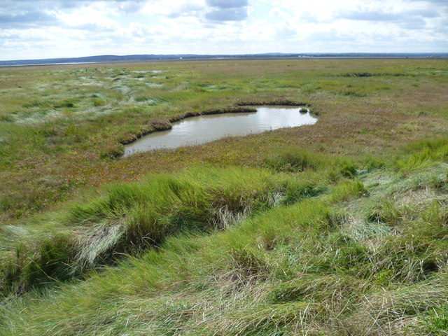 Looking across the salt marsh towards The Swale