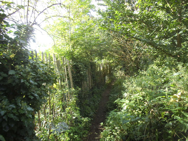 The Ver Colne Valley Walk on Burydell Lane