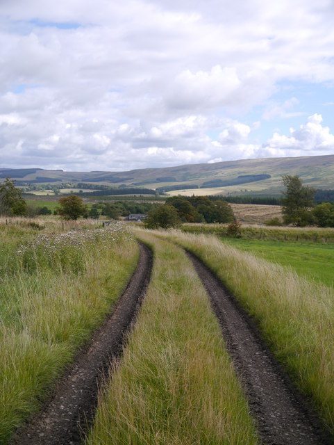 Access Track To The Former Waverley Line