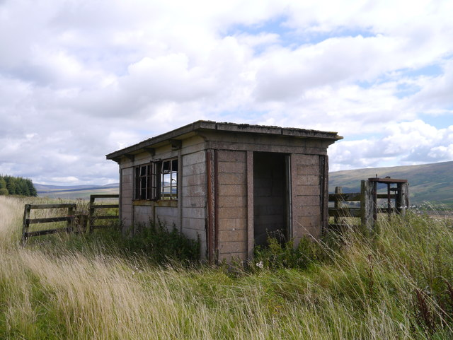 Platelayer's Hut Near Steele Road