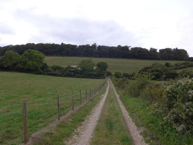 South Downs Way, Exton to Buriton (78)