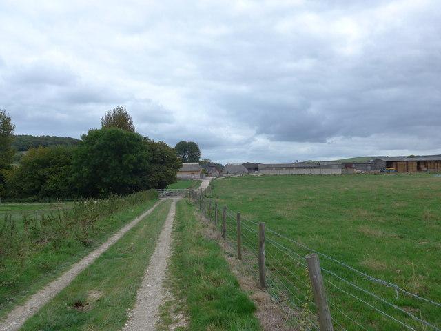 South Downs Way, Exton to Buriton (79)