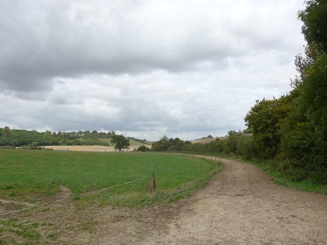 South Downs Way, Exton to Buriton (80)