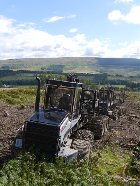 Forwarders In Clearfell